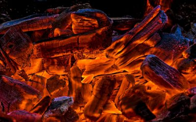 On the Rebirth of an Untended Fire